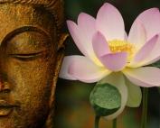 buddha-2a