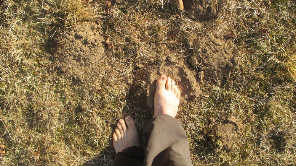 foto 2 piedi nudi